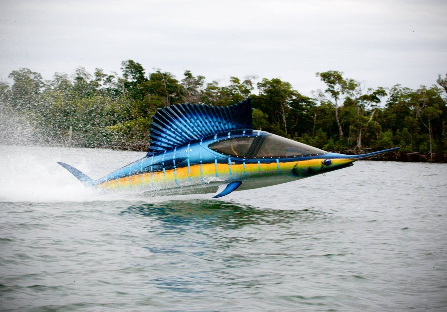 innespace Seabreacher submersible personal watercraft in Colorful Sailfish design
